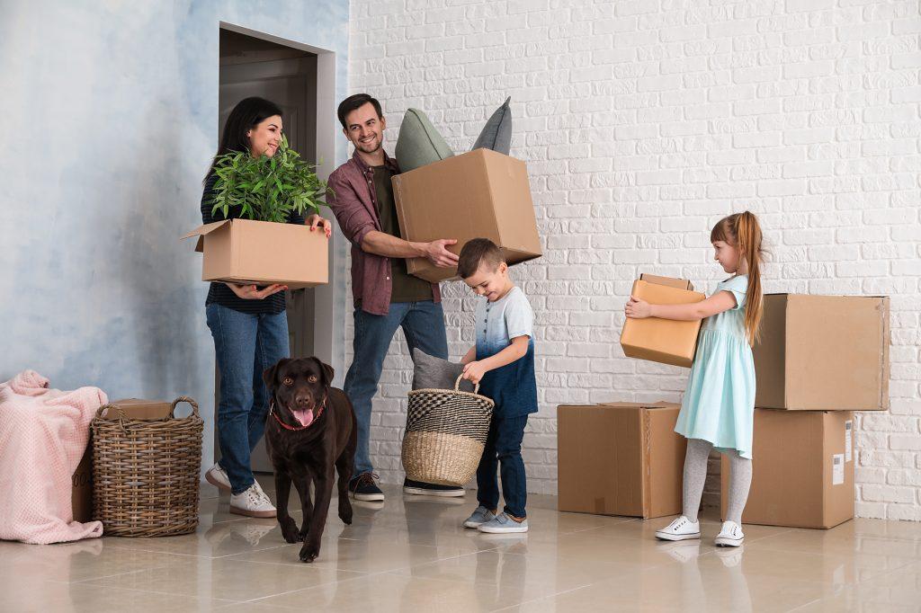 Movers In Charlotte Metropolitan Area
